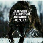 Aggressive Success Quotes Pinterest