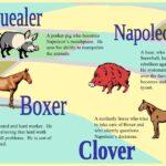 Clover Animal Farm Quotes Pinterest