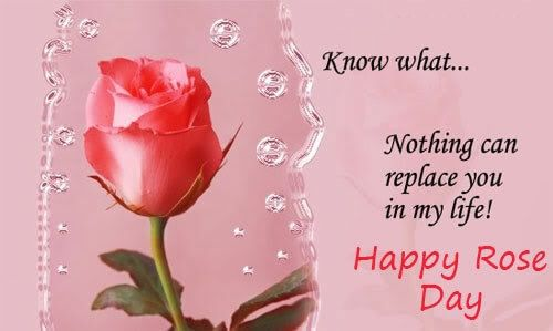 Happy Rose Day Wishes For Wife Pinterest