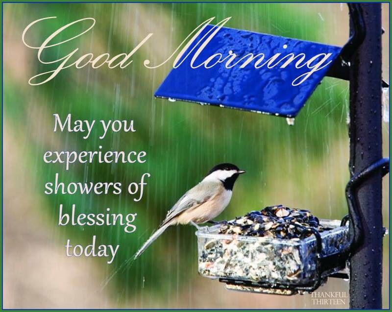 Rainy Day Good Morning Quotes