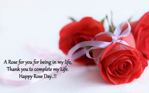 Rose Day Quotes Facebook