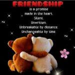 Teddy Bear Friendship Quotes Tumblr