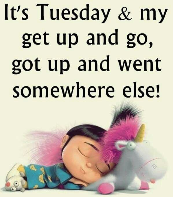 Tuesday Pics And Sayings Facebook (7)